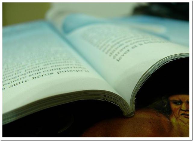 paginas-revista